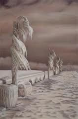 COLD LAKE, ALBERTA. THE WAVES FROM THE LAKE FROZE AS THEY HIT LAMP POSTS, BENCHES, EVEN IN MID-AIR. Frozen Waves, Canadian Winter, Ice Storm, How To Make Snow, True North, Largest Countries, American Country, Amazing Pics, The Great Outdoors