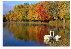 Autumn in Pennsylvania. So pretty. I miss the beautiful colors of fall in PA.
