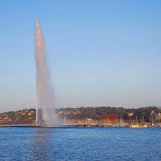 Geneva and its Lake | The Water Fountain #geneva #ttot #visitgeneva #geneve #swissriviera #switzerland #genevacity #bainsdespaquis #citybreak#switzerland #lacdegeneve #lac #riviera #luxurytravel #lakegeneva #lacleman#genevalake  #hotelview#peace #view #genevacity #monument #lacleman #genevalake #hotelview #peace #view #phare #mountain #igersuisse #uno  #waterfountain  #bfmgeneva #visitgeneva #swan #cygnes Geneva City, Lake Geneva, City Break, Luxury Travel, Swan, Switzerland, Fountain, Waterfall, Outdoor