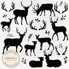 Check out this bumper pack of deer silhouettes! Fawns, stags and antlers galore for you to choose from and use however you like. Remember, deer arent just for Christmas, they can be combined with flowers for a quirky look! Hirsch Silhouette, Silhouette Clip Art, Animal Silhouette, Silhouette Projects, Silhouette Design, Deer Vector, Custom Party Invitations, Deer Photos, Illustrator Cs5