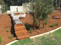 This is a natural play environment. It will allow children to choose what type of play or activity they would like. They can explore, and climb the objects they find. http://www.natureplaysolutions.com.au/Schools.aspx