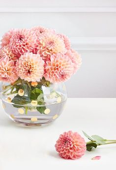 just like mom. shop mother's day gifts from kate spade new york. just like mom. shop mother's day gifts from kate spade new york. My Flower, Flower Vases, Beautiful Flowers, Craft Flowers, Dalia Flower, Glass Flowers, Bloom, Cactus Plante, Arte Floral