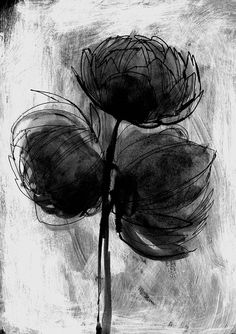 ORGANIC - PIVOINES Illustrations, Sketches, Organic, Abstract, Drawings, Artwork, Peonies, Summary, Work Of Art