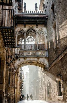 Carrer del Bisbe, Barcelona, Spain (Beauty World) Poster Architecture, Architecture Antique, Architecture Cool, Barcelona Architecture, Landscape Architecture, Gothic Architecture Drawing, Architecture Sketchbook, Architecture Graphics, Landscape Photography
