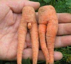 Des fruits et légumes aux formes sexy..