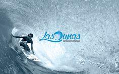 posicionamiento web empresa de surf
