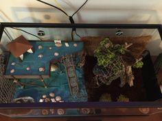 Hermit crab house