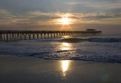 Myrtle Beach State Park. By Perry Baker, Courtesy of SCPRT