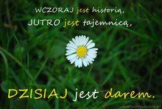 Przeszłość - jak sobie poradzić? | www.MotywujSie.pl