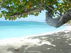 Palm Island, Saint Vincent and The Grenadines