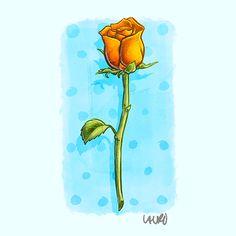 Rose Magic, Rose, Pink, Roses, Pink Roses