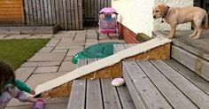 They Design A Ramp For Their Puppy Who Is Afraid Of The Stairs. But They Didn't Expect This... - Suggested Post