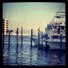 Destin Harbour