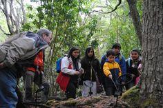Aprueban recursos para plan de Ecoturismo en Cabo de Hornos