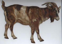 GOAT (CAPRA HIRCUS) Tame Animals, Down On The Farm, Paper Toys, Toy Boxes, Ephemera, Pet Dogs, Sheep, Goats, Decoupage