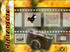 A Husky, Homeland, Adventure Travel, Your Pet, Pets, El Salvador, Authors, Adventure