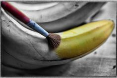 black and white photo with one color   50 Wonderful Black & White Photos with Partial Color Effects