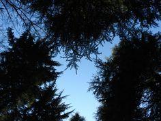 Il cielo sopra
