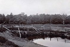 McPherson's Woods, Gettysburg: A broken fence and a pond near McPherson's Woods. This site was the scene of the first heavy fighting of the Battle of Gettysburg (photographed by Matthew Brady, July, 1863). (Photo Credit: Medford Historical Society Collection/CORBIS)