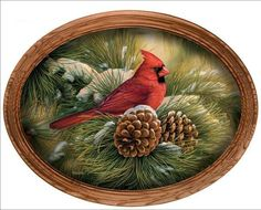 December Dawn Cardinal Canvas Oval Bird Print By Rosemary Millette Framed China Painting, Tole Painting, Painting On Wood, Christmas Bird, Christmas Scenes, Christmas Clipart, Christmas Greetings, Cardinal Birds, Colorful Birds