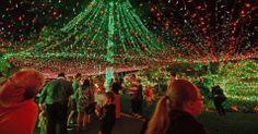Na Austrália, a família Richards ganhou de Natal a entrada para o Guinness Book. Eles enfeitaram a casa com nada mais, nada menos do que 502.165 luzes de natal.  http://imguol.com/c/noticias/2013/11/25/25nov2013---curiosos-observam-arvore-de-natal-iluminada-com-mais-de-meio-milhao-de-lampadas-em-residencia-de-familia-australiana-1385358331871_956x500.jpg