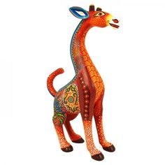 Luis Sosa: Beautiful Giraffe