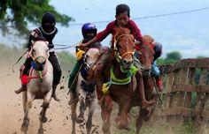 Pacuan Kuda BIMA