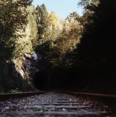 Un tunnel sans train - A tunnel without a train - mlheureuxroy San, River, Plants, Outdoor, Film Photography, Camera Obscura, Outdoors, Plant, Outdoor Games