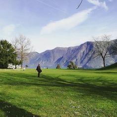Parco Tassini