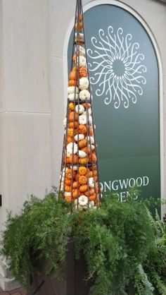 mini pumkin topairy - could use a tomato cage to achieve a similar look #fall