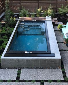 We cant get enough of this install Also we are in love with Dr Nick He makes a mean cappuccino has a lovely senior Bernese Mountain Dog well the coolest pool on the block obvioisly modpools pool stillsummer swimmingpool backyarddesign backyard Shipping Container Swimming Pool, Small Swimming Pools, Small Backyard Pools, Small Pools, Swimming Pools Backyard, Swimming Pool Designs, Pool Decks, Pool Landscaping, Indoor Swimming