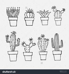 Cactus outlines.