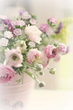 Delicate pastel spring flowers ♡