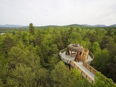 Wild Walk - elevated nature trail and interactive museum in the treetops of Tupper Lake, Adirondacks, Upstate New York Beautiful Places To Visit, Cool Places To Visit, Amazing Places, Wonderful Places, Lake Placid Florida, Tupper Lake, Voyage Canada, Adirondack Park, Adirondack Mountains
