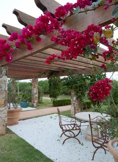 10 climbing plants for pergola: dreamlike seating arrangements in the garden - All For Backyard Ideas Wooden Pergola, Backyard Pergola, Pergola Plans, Pergola Kits, Backyard Landscaping, Pergola Ideas, White Pergola, Cheap Pergola, Iron Pergola