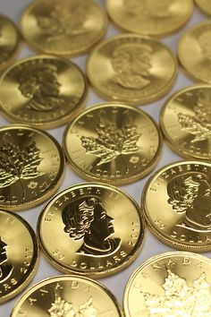 The Royal Canadian Mint introduced the gold Maple Leaf coin in seven years before the US Mint began minting US Mint coins, like the American Eagle. Gold Krugerrand, Gold And Silver Coins, Mint Gold, Silver Bars, Bullion Coins, Silver Bullion, Maple Leaf Gold, I Love Gold, Rare Coins Worth Money