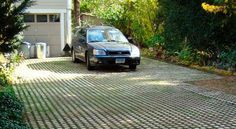 Drivable Grass and Plantable Wall Offering Eco Friendly Products for Green Yard Landscaping