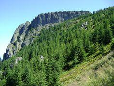 muntii gutai - Gutai Mountains Valley Stream, Pathways, Alps, Romania, Mountains, Nature, Travel, Viajes, Paths