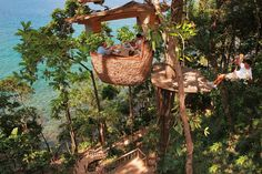 These human nests are biomimicry at its best, built the way birds do with cozy comfort in mind.