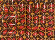 Resultado de imagem para kadiweu grafismos