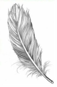 comment dessiner une plume d oiseau dessin en 2018 tatouage plume tatouage et dessin. Black Bedroom Furniture Sets. Home Design Ideas