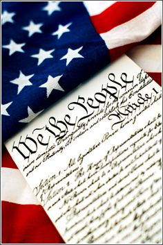 We the People. Everybody has a voice within the government. (Sarah Gooding)