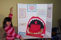 Best Science Fair Projects For Kindergarten Pictures Ideas 5th Grade Science Projects, Cool Science Fair Projects, Science Activities For Kids, Stem Projects, Science Classroom, Science Education, School Projects, Teeth Projects For Kids, Classroom Ideas