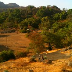 Mount Abu-Hill Station of Rajasthan http://travelleiz.com