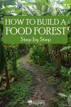 Homestead Gardens, Farm Gardens, Outdoor Gardens, Permaculture Design, Permaculture Garden, Bio Vegan, Home Vegetable Garden, Forest Garden, Edible Garden