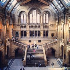 Natural History Museum in Queen's Gate, Greater London. Perderse en el Natural History Museum.