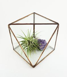 Sliced Cube Stained Glass Terrarium by mindandmineral on Etsy