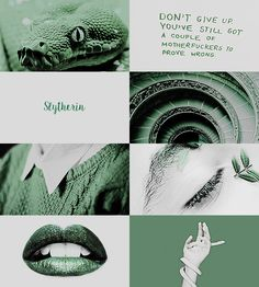 "1/2 ""literature aesthetics: ↳ slytherin house (harry potter, j.k. rowling) """