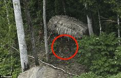 What This Uncontacted Tribe Did When Seeing A Plane For The First Time Is Awesome Yet Heartbreaking. - http://www.creepyglobe.com/entertainment/what-this-uncontacted-tribe-did-when-seeing-a-plane-for-the-first-time-is-awesome-yet-heartbreaking/