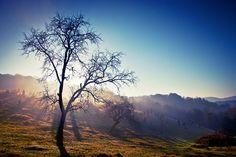 Late autumn by Radu Ponta on 500px